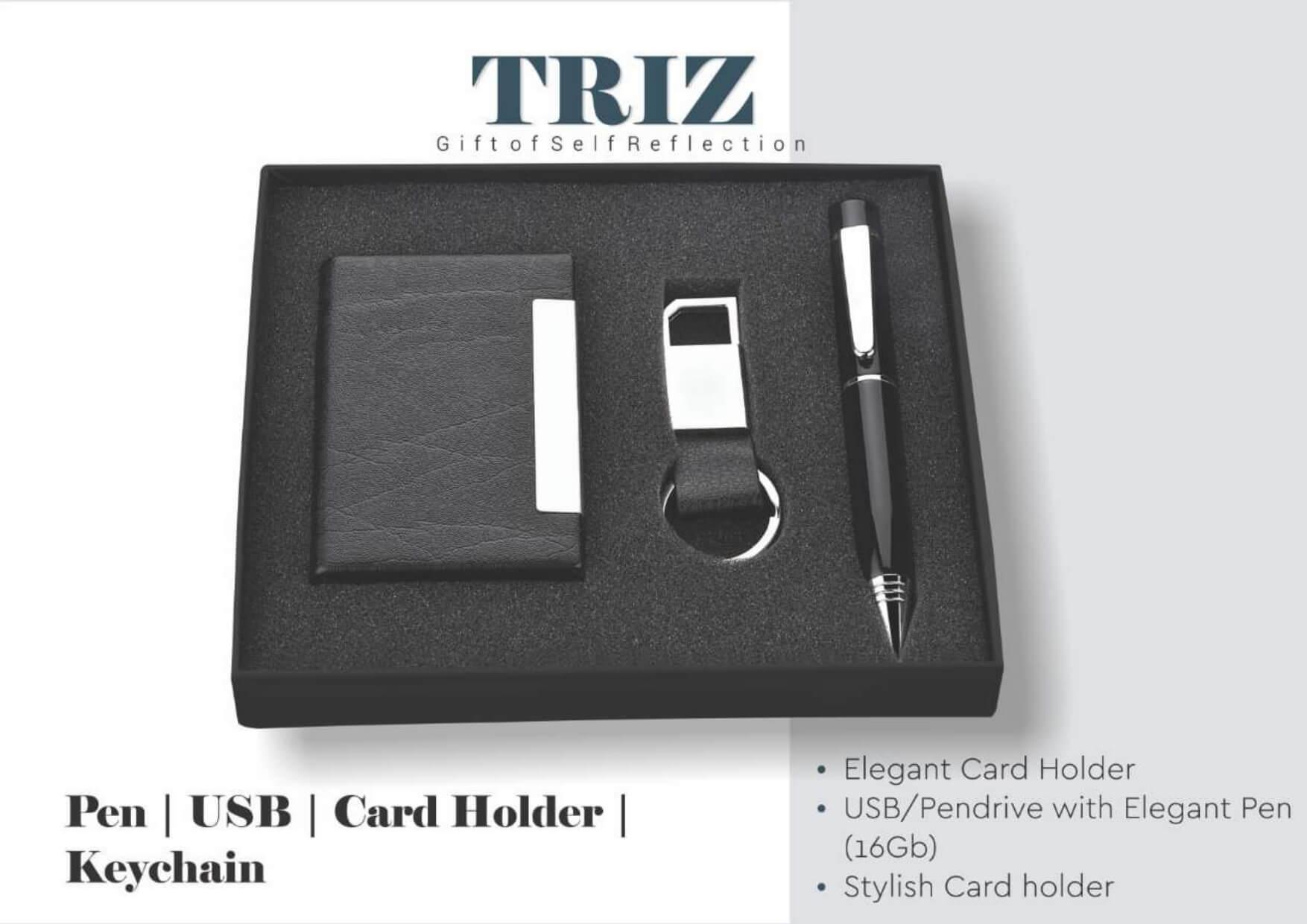 Pen with Usb , Card Holder, Keychain Set Triz